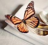 Beautiful Browns / A mix of beautiful brown butterflies