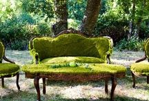 Decor with moss