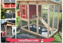Backyard Coops - / Henhouses and chicken coops come in all shapes and sizes. Many are made from reclaimed materials.  Other are designed to mimic the owner's home.  Pinning some interesting, unusual coops as well as a few of our CoopFloor designs/customers.