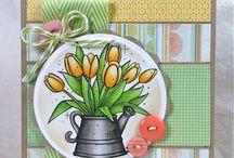 CARDS - BIRTHDAY/FEMININE / Birthday cards for women / by Debbie Fischer