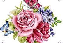 transfer ruže