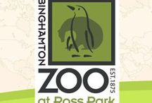 Binghamton Zoo / by Binghamton Zoo