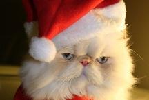 christmas - kerstmis