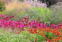 Gardening&Flower