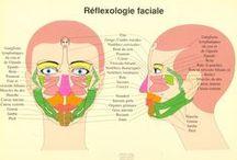 Réflexologie / La réflexologie au service de la santé
