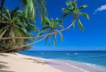 Fiji / Holiday in Fiji