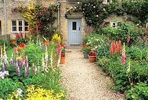 cottage garden / Charming, colourful and slightly wild, find and share ideas on fabulous cottage garden spaces.(To join this board, please send a message or e-mail gardenlovers@zoho.com, and an invitation will follow shortly. Feel free to invite other members. Irrelevant pins will either be moved to a more appropriate board or will be removed. Please add pins and re-pin with consideration to other members. Have fun!)