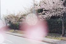 anime | shigatsu wa kimi no uso / you exist inside spring.┊your lie in april┊(tv)