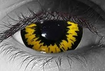 Color: Eye See Yellow / by Angie Rowe