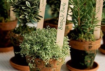 Xtra-Best Gardening!