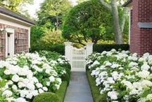 Castle / My white picket fence dream