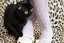 Cat Ladies / Leopard Ladies love cats. #cutecats #pinkcats #cats #kittens #tigers #kitty #miauw #meouw