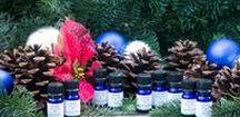 Vibrant Blue Oils