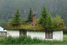 Eco-Friendly / by Martie ...