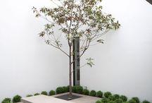 "Crystal Garden / ""My garden is my most beautiful masterpiece""  ― Claude Monet"