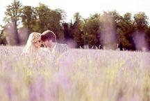 ♡ Lavender Wedding ♡