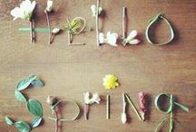 Spring ❤ / by Party Pieces