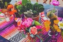 ✿ Fiesta Party ✿