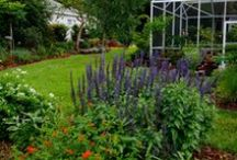 Wendy's Magical Garden / Beautiful garden / by Martie ...