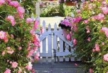 Kvety&Zahrada