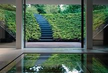 Garden, Pool & Landscape