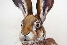 Our friend Harry the Hare