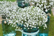 Flowerest