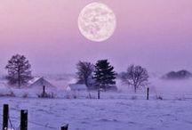 A Hildon Winter