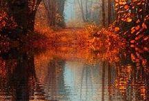 A Hildon Autumn
