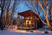 Tiny House / Cabin