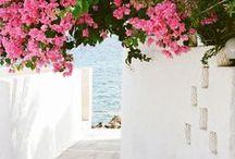 Gorgeously Grecian