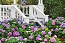 Záhrady, terasy, pergoly, balkóny a obloky...