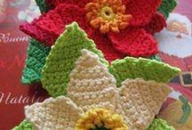 Stelle di Natale e fiori