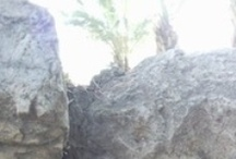 Israel's Archaeological Treasures
