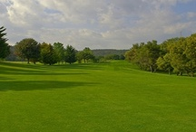 Campos de Golf ❀  / Estos flamantes campos de golf están en Click & Golf