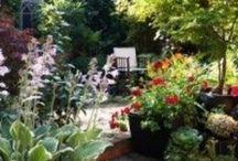 Garden bliss / Fabo inspiration