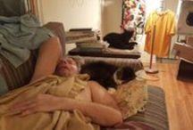 DesHommes/et/desChatons / DesHommes/et/desChatons   Des Hommes et des Chatons, Hot Guys And Cats, NO PIN LIMIT !!! Les mecs chauds et chats,   NON LIMITE DE PIN !!!  S'IL VOUS PLAÎT Invitez vos suiveurs  Créé par Beary de Aux deux-Polar.Com Dimanche, 28 Septembre en 2014. À jour Dimanche, 02 Novembre 2014  19:56 Est américain.