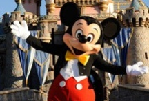 I just love Disney! ! / by Kori Barnett