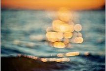 Sea Salt & Sand / by Kassidy Ames