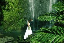 Destination Weddings / Amazing photos from couples who just needed to get away.