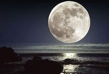 Lunar Love / Nature is beautiful. This a collection of my favorite photos of the moon. Moon photography