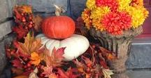 Fall / Everything Fall.  Decorating, Crafting, Fall Leaves, Autumn, and more.