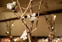 Alaric Flower Design Weddings / Alaric Flower Designs can create that special bouquet or floral arrangement for your special day.