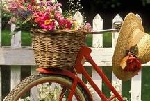 Bikes To Like