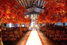 Fall Wedding Inspirations / Autumn & Harvest wedding inspirations from The Bride's Shoppe, Great Falls, MT www.thebridesshoppe.net / by The Bride's Shoppe