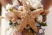 Beach Wedding Inspirations / Fabulous wedding ideas with a beach, shell and seashore theme, from The Bride's Shoppe, Great Falls, MT. www.TheBridesShoppe.com
