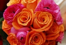 Hot Pink & Orange Wedding Inspirations / Wonderful wedding ideas in a bold combination of hot pink and orange...from The Bride's Shoppe, Great Falls, MT www.thebridesshoppe.net