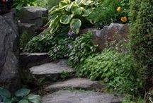 rachel garden