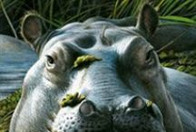 Hippo / Kijk ook op Yurls bij;Tineke Witlam.yurls.net