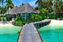 Paradise / Die schönsten Orte der Welt